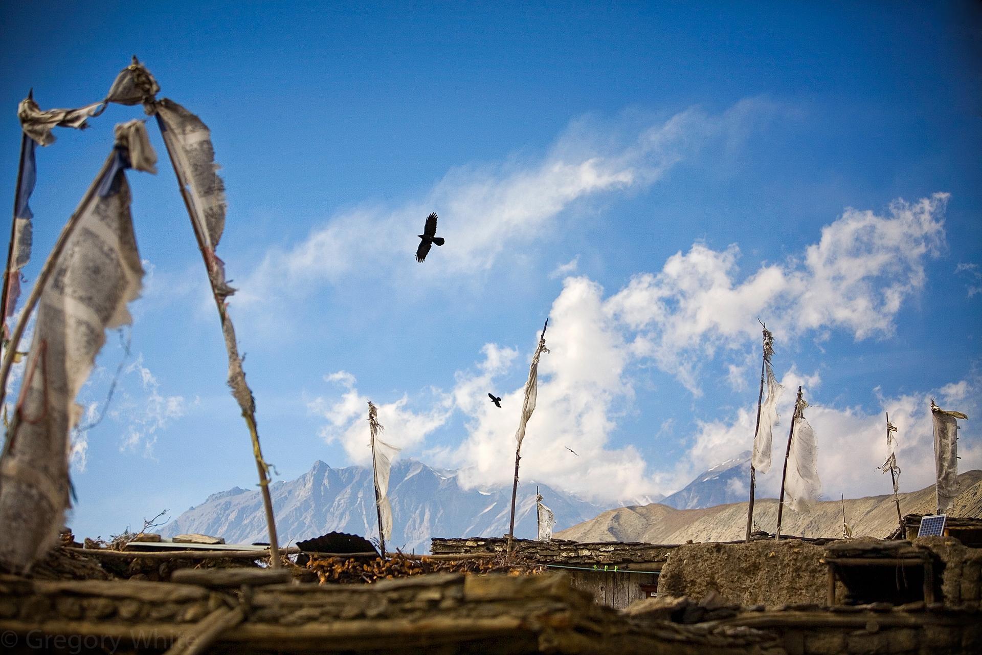 """Wind"" Kokbeni, Nepal."